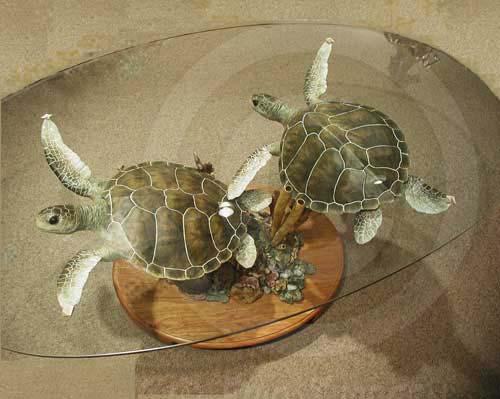 Superb Green Sea Turtles Table, Green Sea Turtles Table
